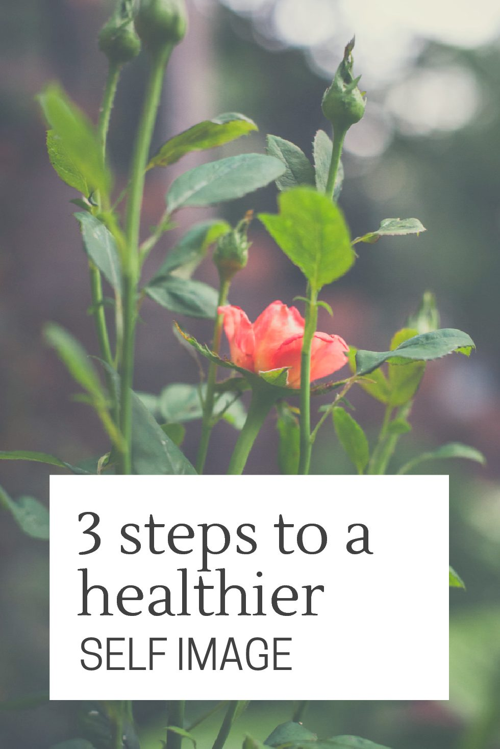 3 Steps to Have a Healthier Self Image